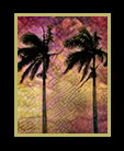 four palm trees against wild sky thumbnail